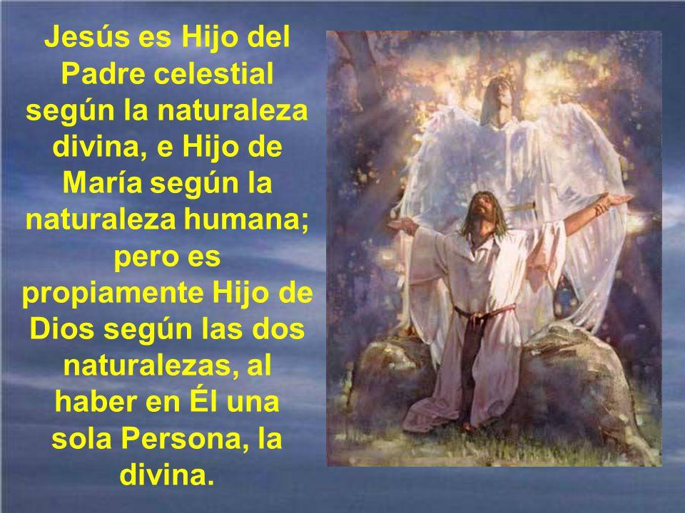 Jesús fue concebido por obra y gracia del Espíritu Santo.