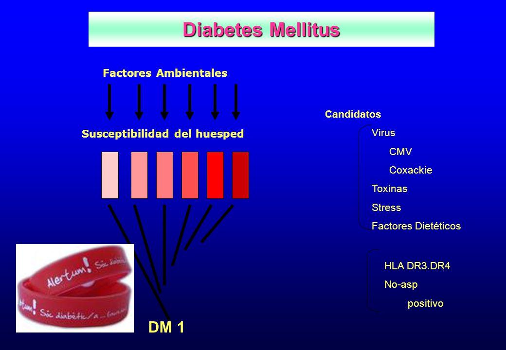 Factores Ambientales Susceptibilidad del huesped Candidatos Virus CMV Coxackie Toxinas Stress Factores Dietéticos HLA DR3.DR4 No-asp positivo DM 1 Dia