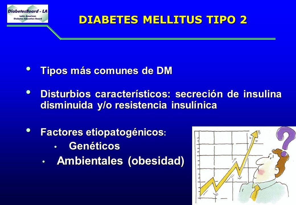 12 DIABETES MELLITUS TIPO 2 Tipos más comunes de DM Tipos más comunes de DM Disturbios característicos: secreción de insulina disminuida y/o resistenc