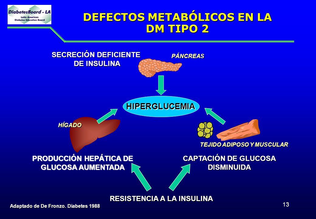 13 DEFECTOS METABÓLICOS EN LA DM TIPO 2 Adaptado de De Fronzo. Diabetes 1988 HIPERGLUCEMIA RESISTENCIA A LA INSULINA RESISTENCIA A LA INSULINA CAPTACI