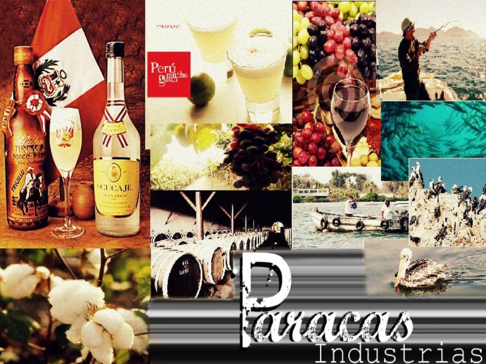 El turismo es la actividad económica que genera mayor ingreso no sólo para Paracas sino para el Perú.