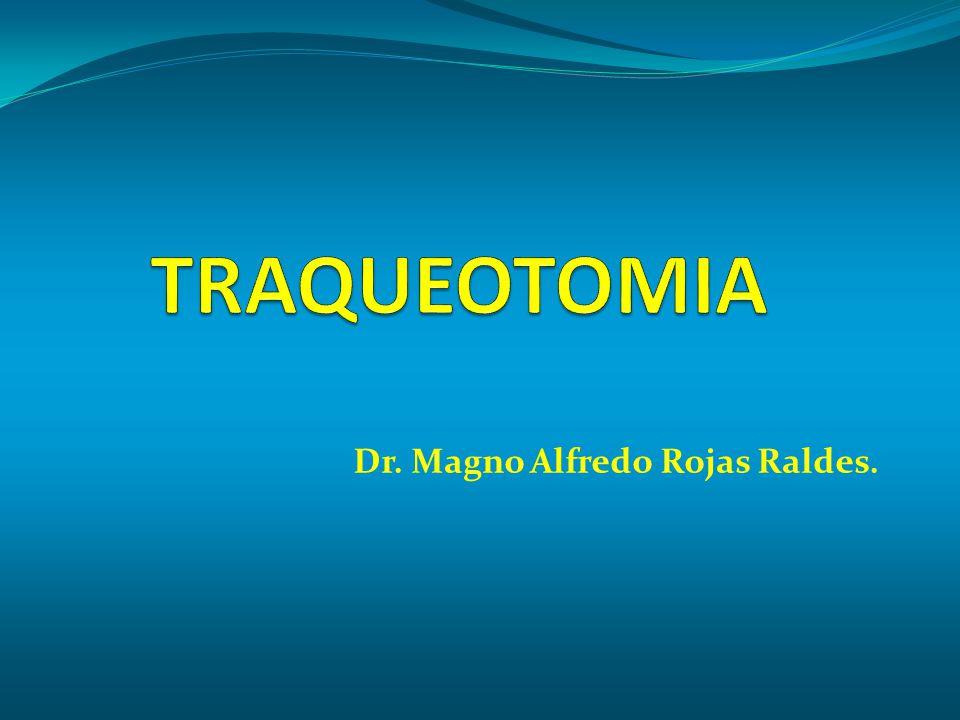 Dr. Magno Alfredo Rojas Raldes.
