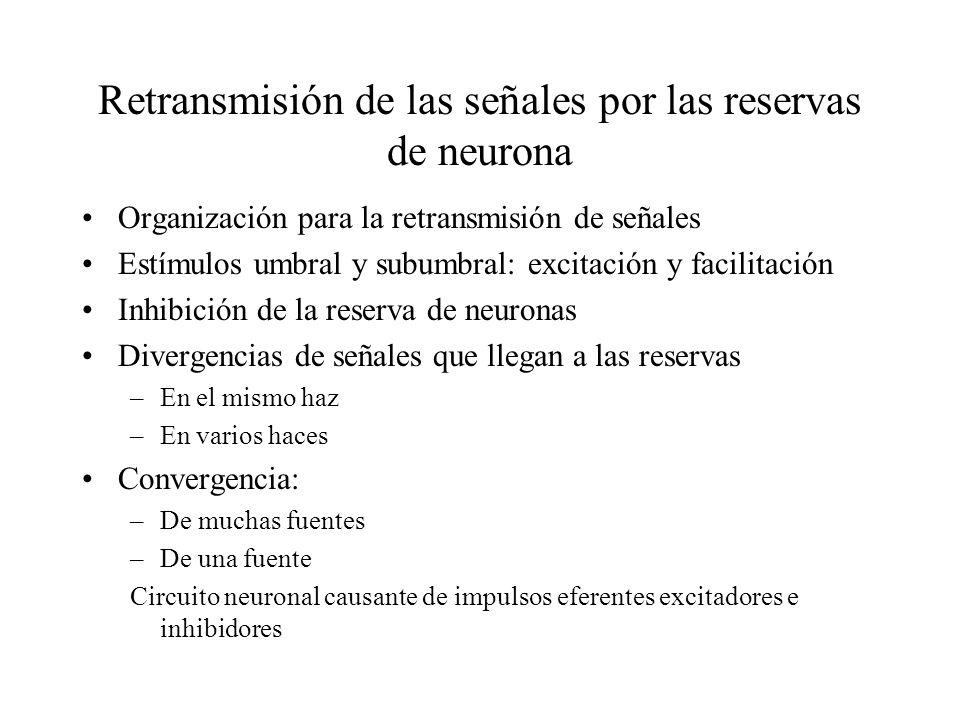 Retransmisión de las señales por las reservas de neurona Organización para la retransmisión de señales Estímulos umbral y subumbral: excitación y faci