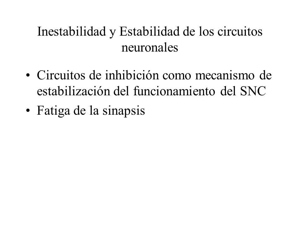 Inestabilidad y Estabilidad de los circuitos neuronales Circuitos de inhibición como mecanismo de estabilización del funcionamiento del SNC Fatiga de