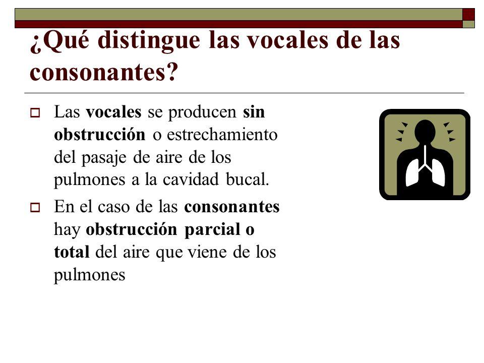 ¿Qué distingue las vocales de las consonantes? Las vocales se producen sin obstrucción o estrechamiento del pasaje de aire de los pulmones a la cavida