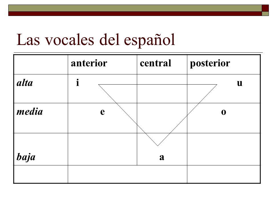 Las vocales del español anteriorcentralposterior alta i u mediaeo bajaa