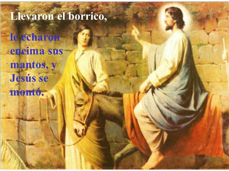 Ellos les contestaron como había dicho Jesús; y se lo permitieron.