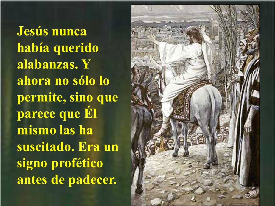 Jesús entra con gloria, pero con humildad. Por eso quiere cabalgar, pero sobre un borrico.