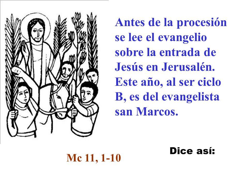 nuestra fe y nuestro amor a Jesucristo Comienza la liturgia con la bendición de los ramos. Con ellos testimoniamos