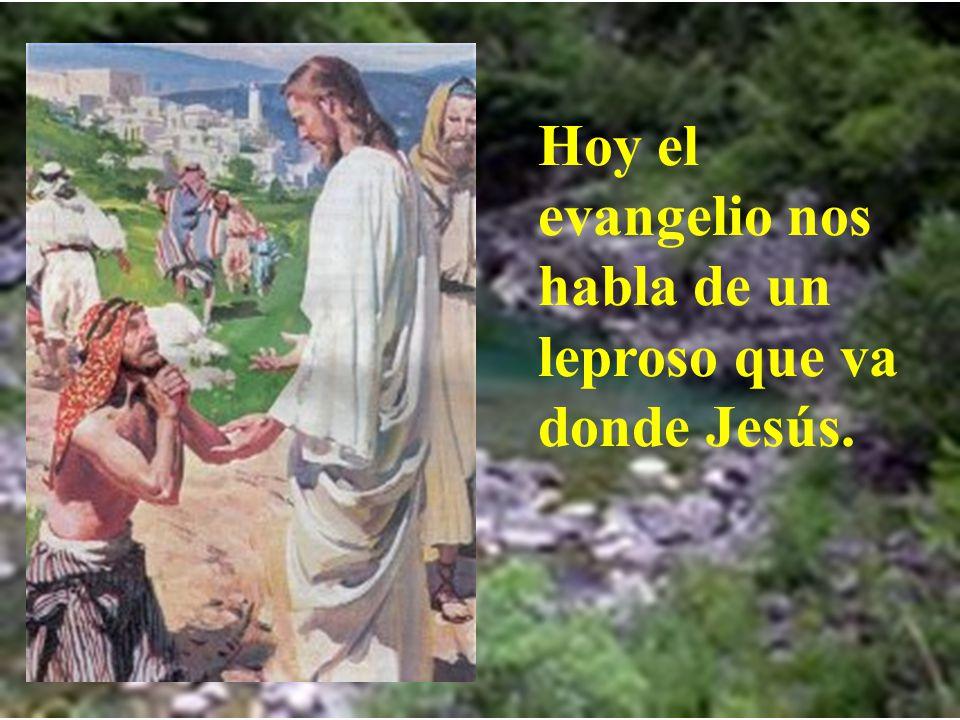 Hoy el evangelio nos habla de un leproso que va donde Jesús.