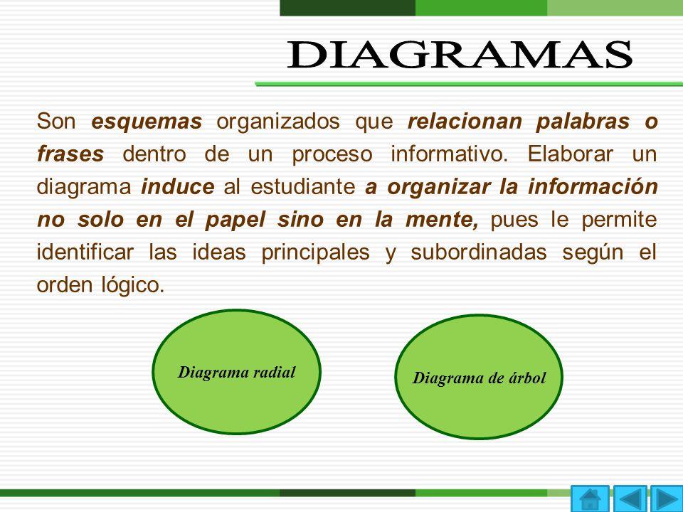 Son esquemas organizados que relacionan palabras o frases dentro de un proceso informativo. Elaborar un diagrama induce al estudiante a organizar la i