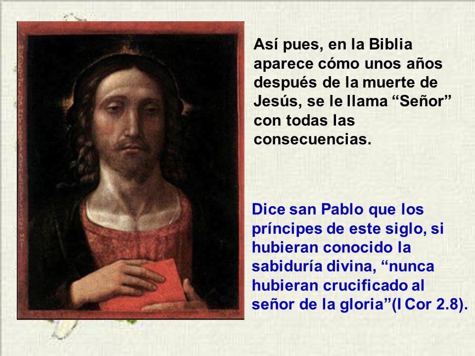 Escribe san Pablo: Él es imagen de Dios invisible, Primogénito de toda la creación, porque en él fueron creadas todas las cosas, en los cielos y en la