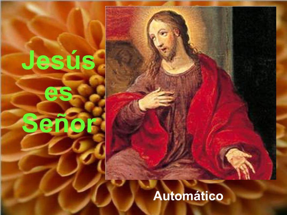 Del hecho de que Jesucristo sea el Señor del hombre se deduce que todo cuanto somos y tenemos es del Señor.