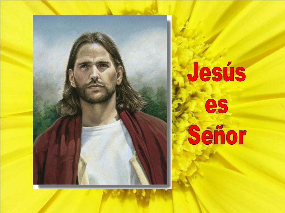 Por eso Jesús no quiere ser señor a la fuerza, sino que nosotros cooperemos.