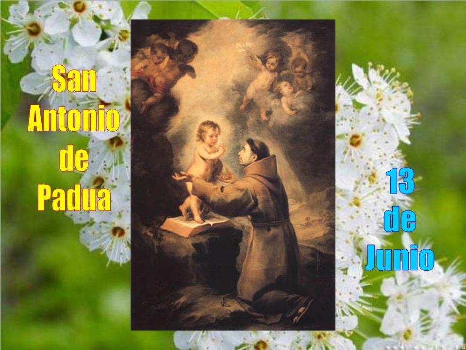San Antonio de Padua fue canonizado el 30 de Mayo de 1232, menos de un año después de su muerte.