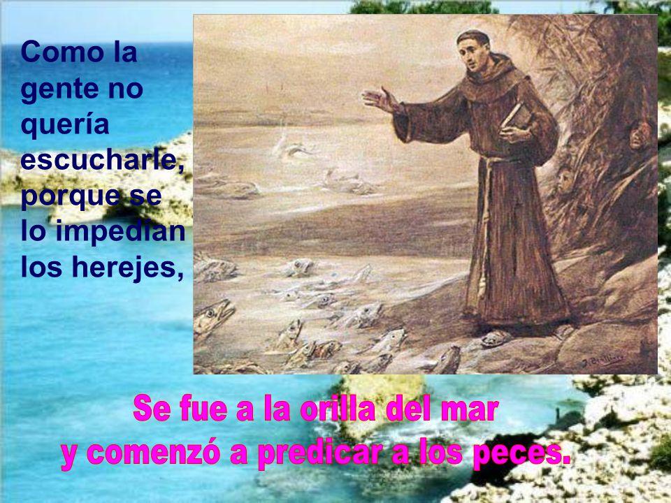 En Rímini tuvo una mayor oposición de los herejes. Y el santo recurrió a la eficacia por medio del milagro.