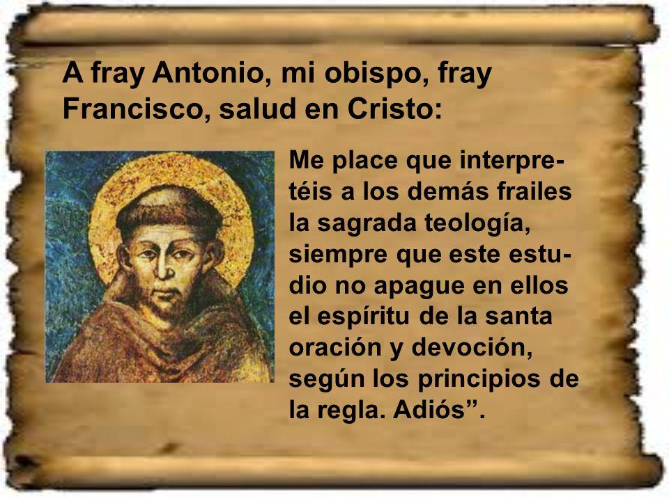 Además de la misión de predicador, a san Antonio se le dio el cargo de lector en teología entre sus hermanos. Fue el mismo san Francisco en una carta