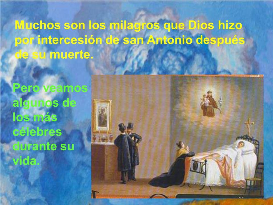 San Antonio de Padua fue canonizado el 30 de Mayo de 1232, menos de un año después de su muerte. El papa Gregorio IX en ese momento le llamó Doctor de