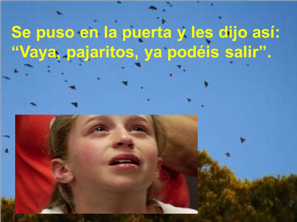 Antonio les dijo a todos: Señores, nadie se alarme; los pájaros no se marchan hasta que yo no les mande.