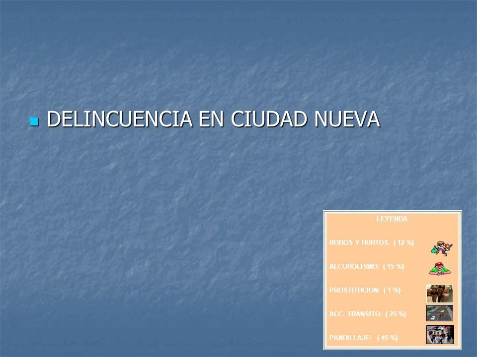 DELINCUENCIA EN CIUDAD NUEVA DELINCUENCIA EN CIUDAD NUEVA LEYENDA ROBOS Y HURTOS. ( 12 %) ALCOHOLISMO: ( 15 %) PROSTITUCION: ( 1 %) ACC. TRANSITO: ( 2