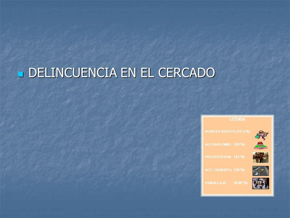 DELINCUENCIA EN EL CERCADO DELINCUENCIA EN EL CERCADO LEYENDA ROBOS Y HURTOS. (17.5 %) ALCOHOLISMO: (20 %) PROSTITUCION: (15 %) ACC. TRANSITO: (30 %)