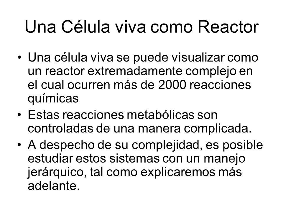 Una Célula viva como Reactor Una célula viva se puede visualizar como un reactor extremadamente complejo en el cual ocurren más de 2000 reacciones químicas Estas reacciones metabólicas son controladas de una manera complicada.