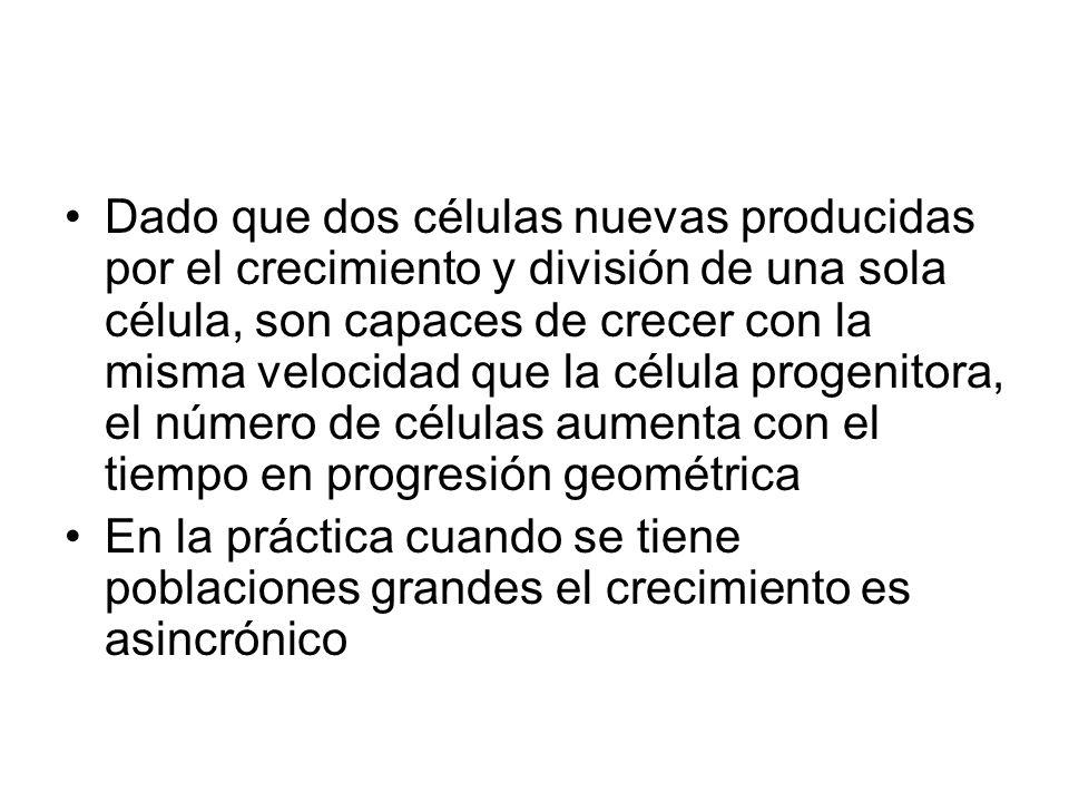 Dado que dos células nuevas producidas por el crecimiento y división de una sola célula, son capaces de crecer con la misma velocidad que la célula progenitora, el número de células aumenta con el tiempo en progresión geométrica En la práctica cuando se tiene poblaciones grandes el crecimiento es asincrónico