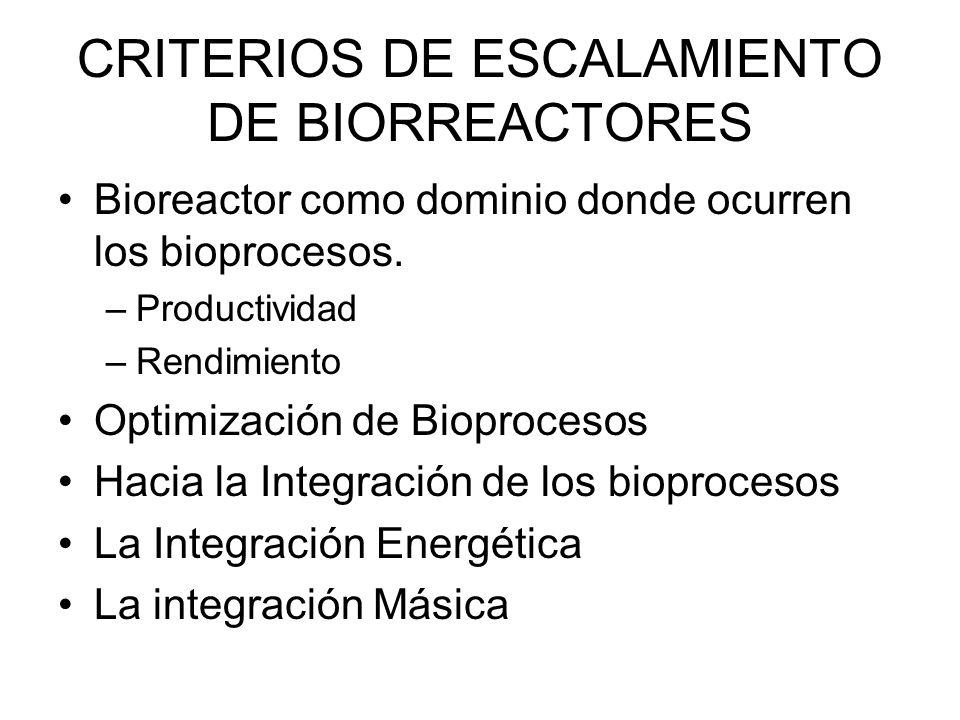 CRITERIOS DE ESCALAMIENTO DE BIORREACTORES Bioreactor como dominio donde ocurren los bioprocesos.