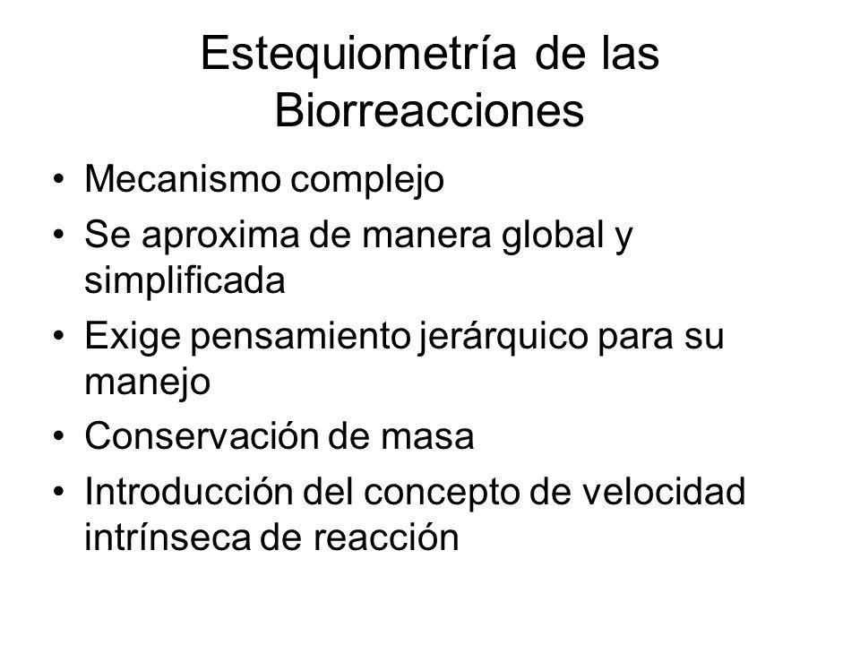 Estequiometría de las Biorreacciones Mecanismo complejo Se aproxima de manera global y simplificada Exige pensamiento jerárquico para su manejo Conservación de masa Introducción del concepto de velocidad intrínseca de reacción
