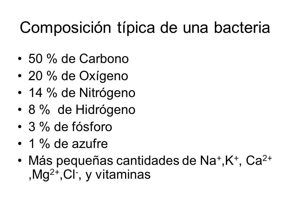 Composición típica de una bacteria 50 % de Carbono 20 % de Oxígeno 14 % de Nitrógeno 8 % de Hidrógeno 3 % de fósforo 1 % de azufre Más pequeñas cantidades de Na +,K +, Ca 2+,Mg 2+,Cl -, y vitaminas