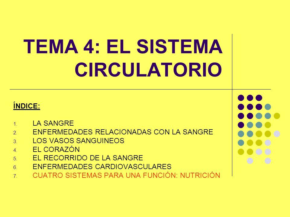 1.LA SANGRE El sistema circulatorio: Corazón, vasos sanguíneos y sangre.