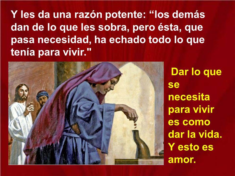En ese momento Jesús ensancha su corazón y les dice a los apóstoles: Ella ha echado más que nadie.