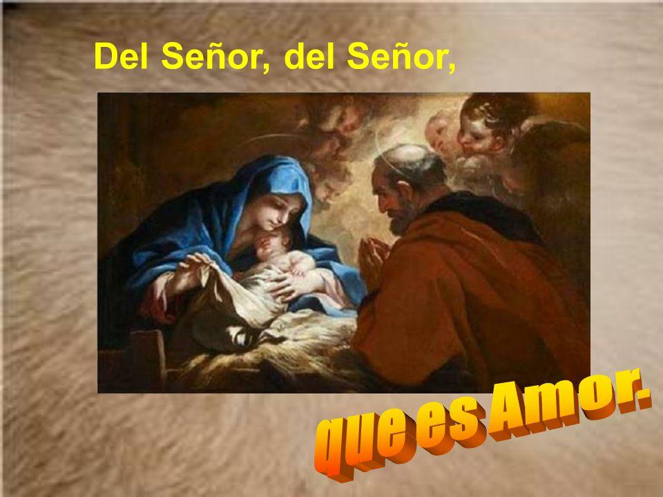 Llegó la Navidad del Niño Dios. Con Él llega la sonrisa del Señor. Automático
