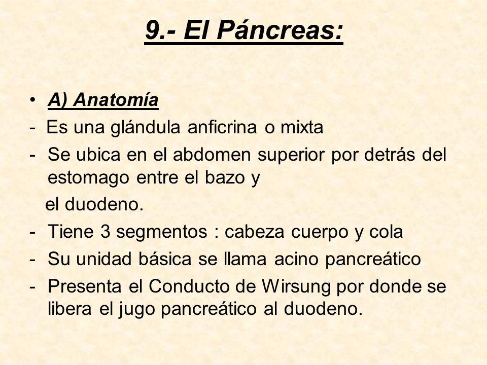 B) Jugo Pancreático : - Es un jugo alcalino de pH 8 -Se produce en un volumen diario de 800ml.