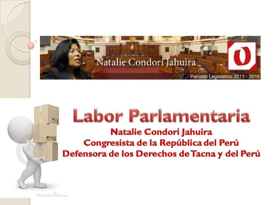 3.- CONSULTA EN LÍNEA.- Mediante esta sección, usted podrá hacer seguimiento a los casos que se han presentado por intermedio del Despacho de la Congresista Natalie Condori Jahuira.