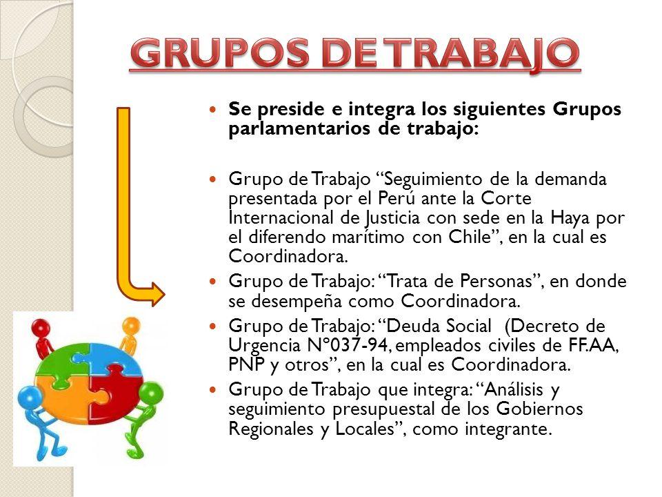 Se preside e integra los siguientes Grupos parlamentarios de trabajo: Grupo de Trabajo Seguimiento de la demanda presentada por el Perú ante la Corte Internacional de Justicia con sede en la Haya por el diferendo marítimo con Chile, en la cual es Coordinadora.