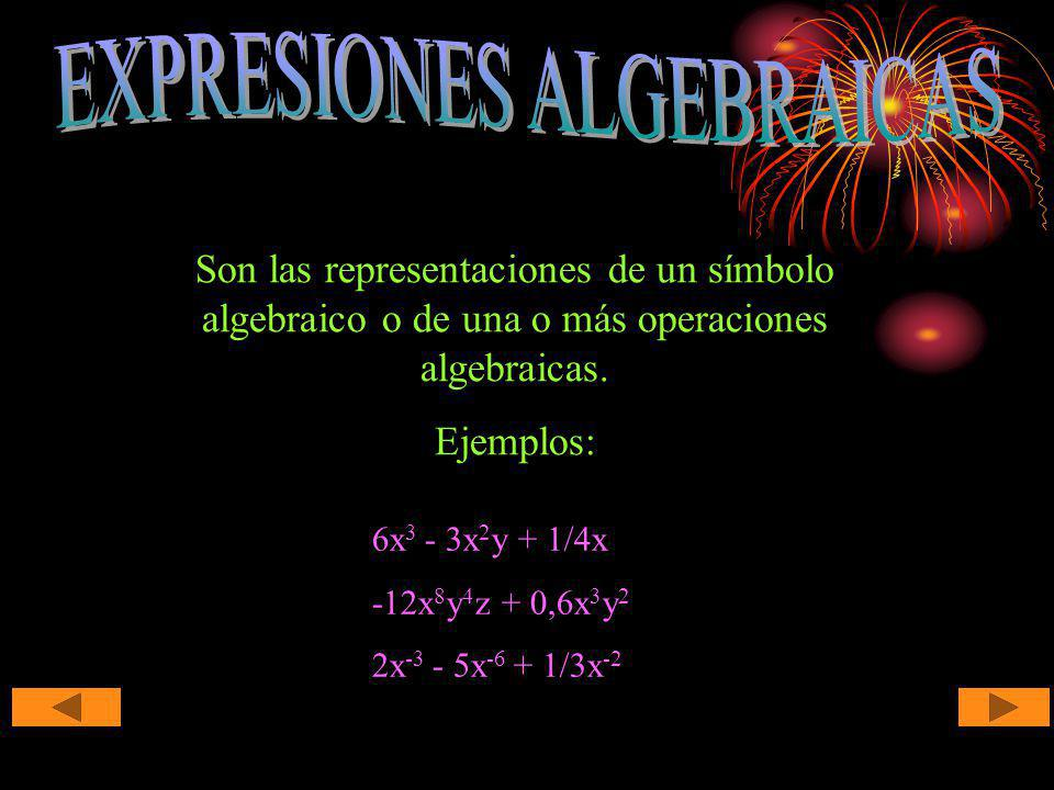 Son las representaciones de un símbolo algebraico o de una o más operaciones algebraicas. Ejemplos: 6x 3 - 3x 2 y + 1/4x -12x 8 y 4 z + 0,6x 3 y 2 2x
