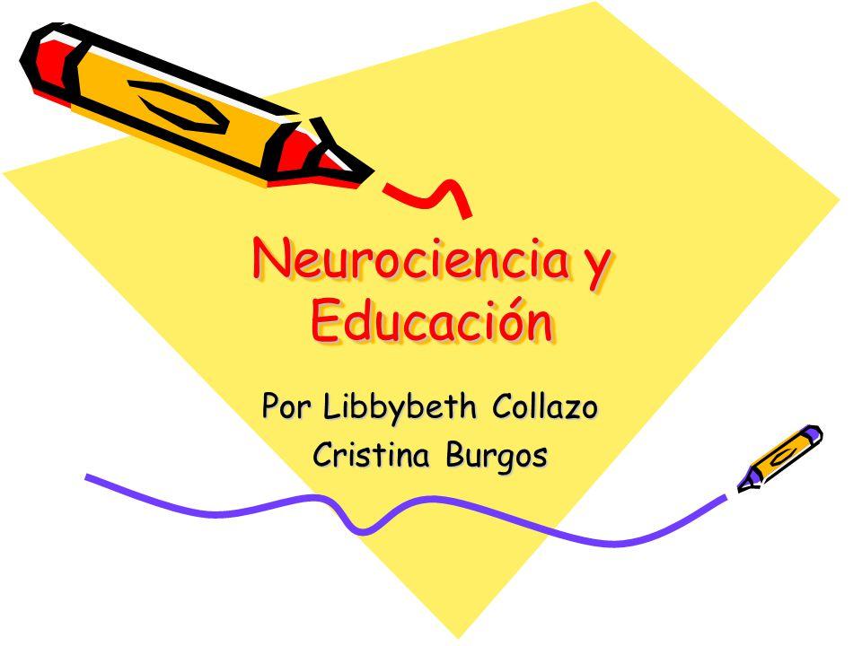 Neurociencia y Educación Por Libbybeth Collazo Cristina Burgos