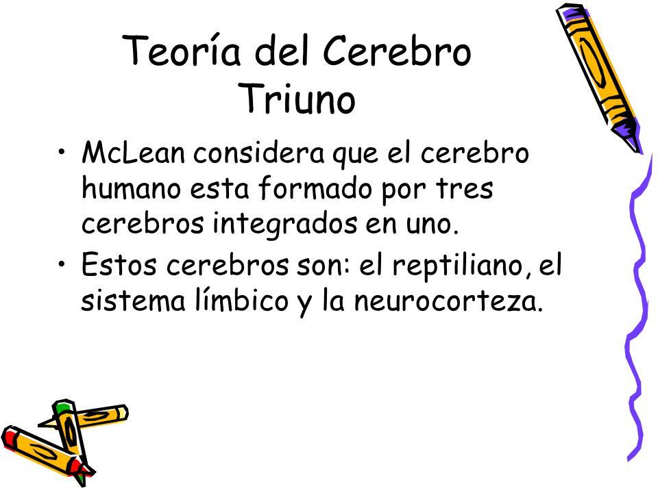 Teoría del Cerebro Triuno McLean considera que el cerebro humano esta formado por tres cerebros integrados en uno.