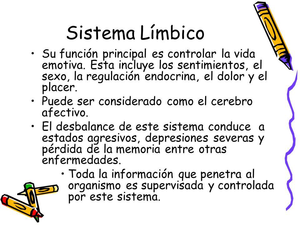 Sistema Límbico Su función principal es controlar la vida emotiva.