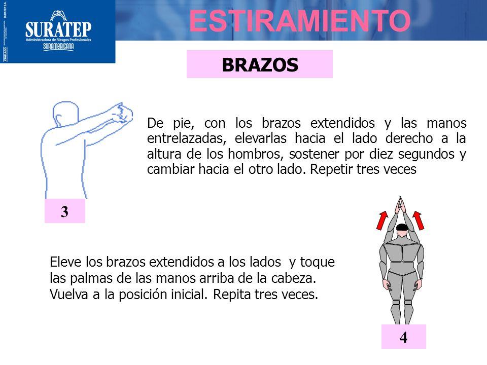 BRAZOS ESTIRAMIENTO Eleve los brazos extendidos a los lados y toque las palmas de las manos arriba de la cabeza.
