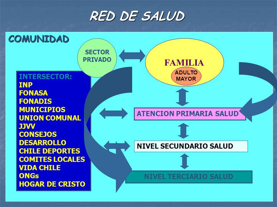 RED DE SALUD COMUNIDAD INTERSECTOR: INP FONASA FONADIS MUNICIPIOS UNION COMUNAL JJVV CONSEJOS DESARROLLO CHILE DEPORTES COMITES LOCALES VIDA CHILE ONG