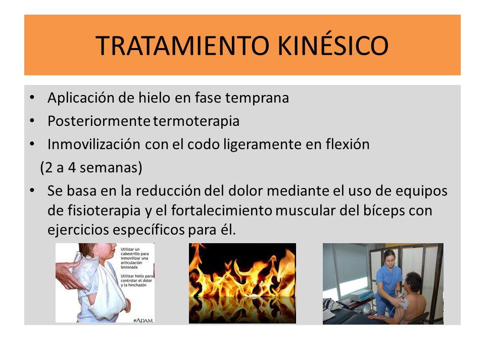 TRATAMIENTO KINÉSICO Aplicación de hielo en fase temprana Posteriormente termoterapia Inmovilización con el codo ligeramente en flexión (2 a 4 semanas