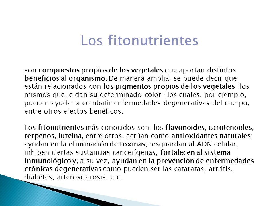 Los fitonutrientes son compuestos propios de los vegetales que aportan distintos beneficios al organismo. De manera amplia, se puede decir que están r