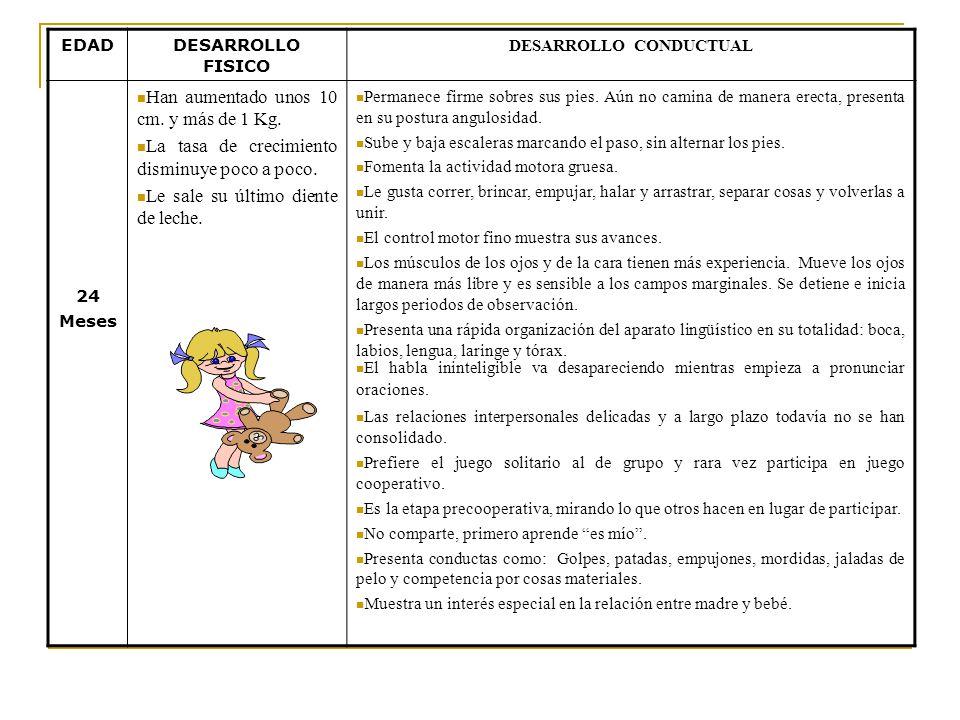 EDADDESARROLLO FISICO DESARROLLO CONDUCTUAL 18 Meses El niño pesa entre 9.9 y 12.2 Kg. Su promedio de talla es entre 78 y 83 cm. Casi todos los niños