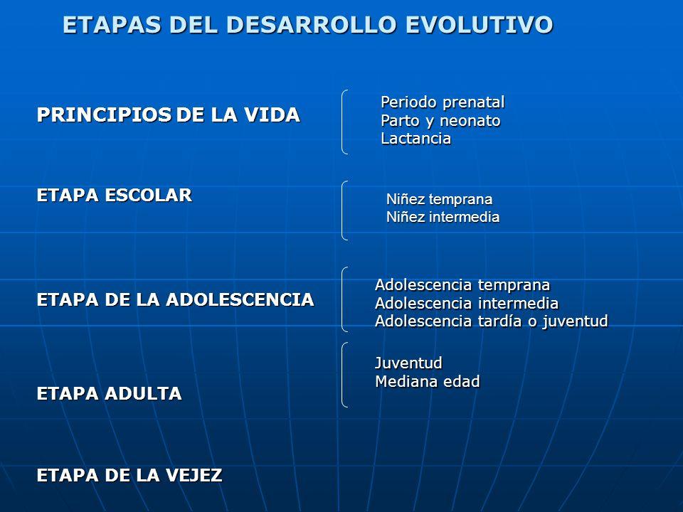 CARACTERISTICAS DESARROLLO EMOCIONAL Y SOCIAL Grupo de Iguales: Constituye una subcultura propia con reglas, costumbres, requisitos y juegos preferidos.