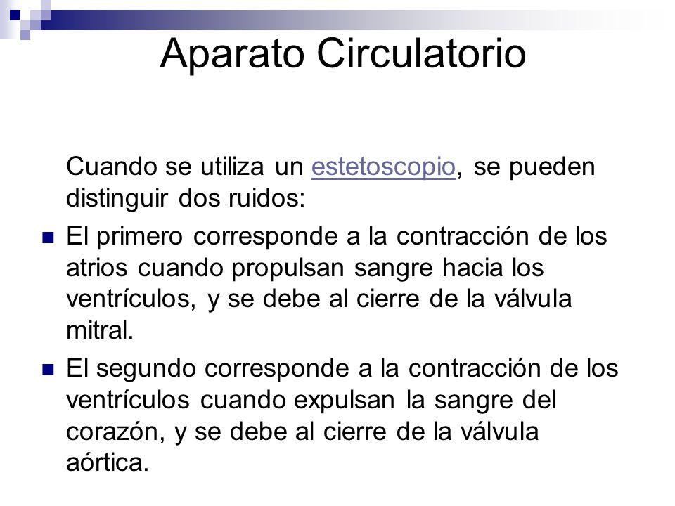 Aparato Circulatorio Cuando se utiliza un estetoscopio, se pueden distinguir dos ruidos:estetoscopio El primero corresponde a la contracción de los at