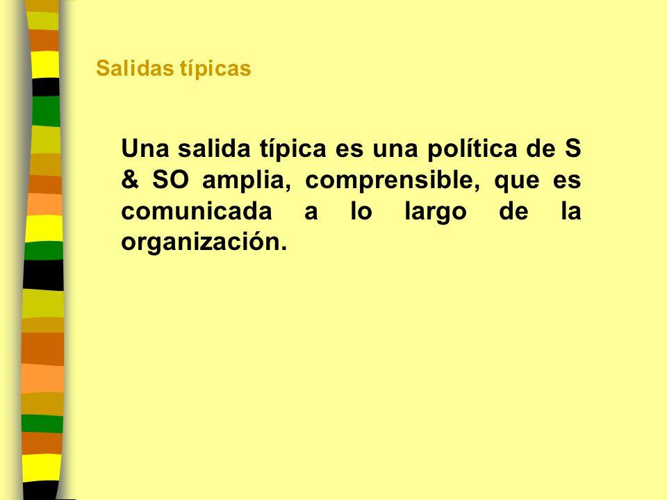 Salidas típicas Una salida típica es una política de S & SO amplia, comprensible, que es comunicada a lo largo de la organización.