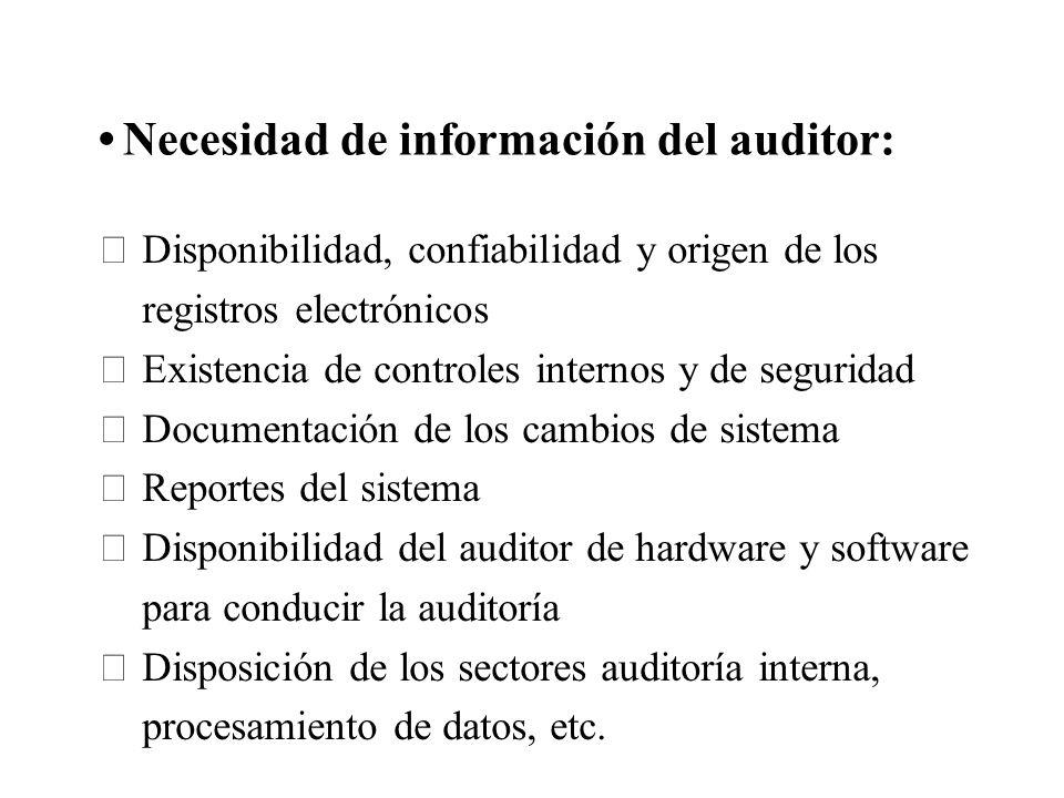 Necesidad de información del auditor: Disponibilidad, confiabilidad y origen de los registros electrónicos Existencia de controles internos y de segur