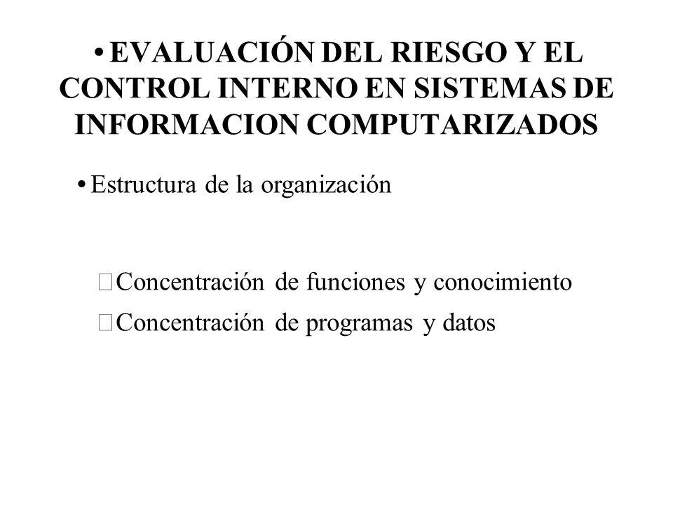 EVALUACIÓN DEL RIESGO Y EL CONTROL INTERNO EN SISTEMAS DE INFORMACION COMPUTARIZADOS Estructura de la organización Concentración de funciones y conoci